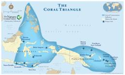 coral-triangle-map-1000