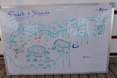 egypt_shark_yolande_plan